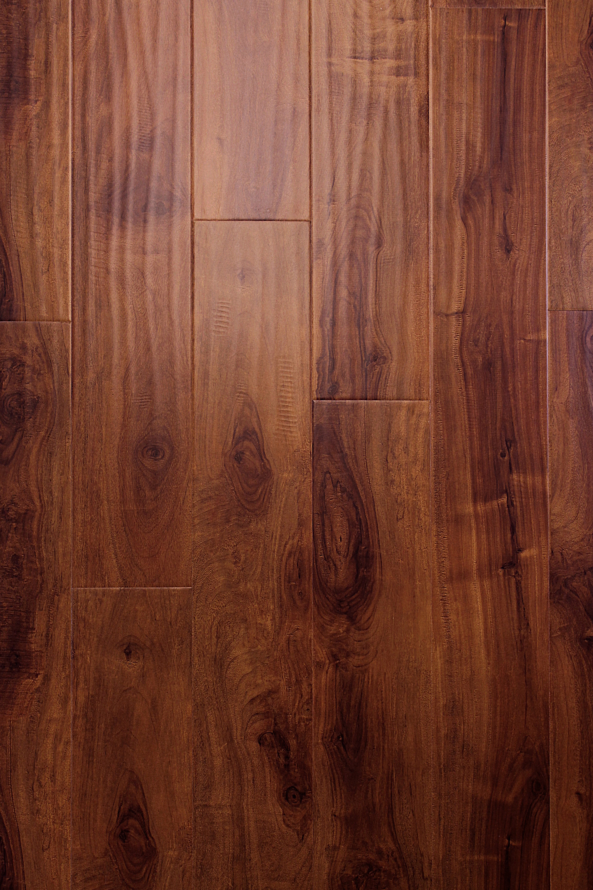 Parkay forest mocha acacia 12 3 mm masters building for Parkay laminate flooring