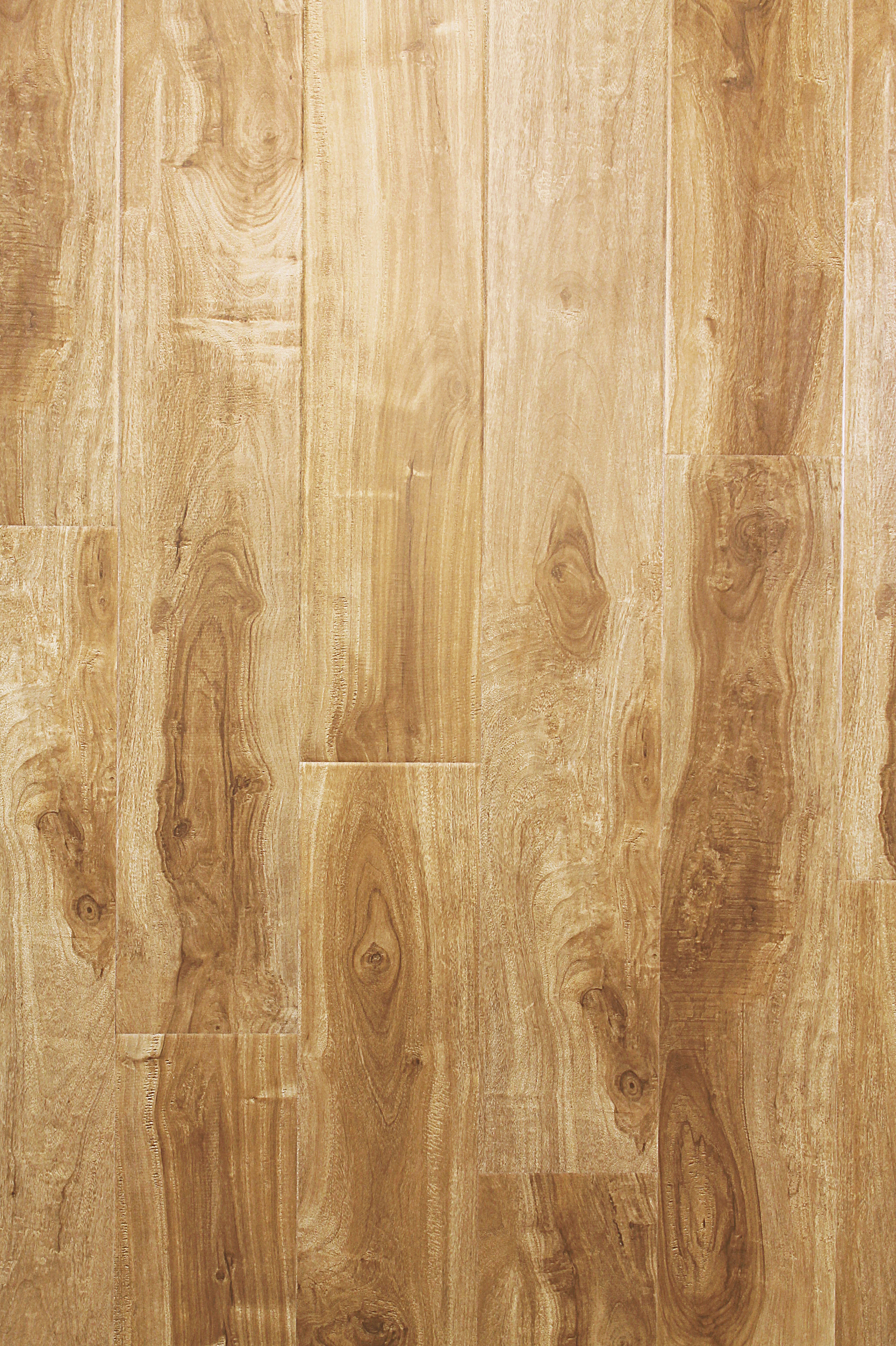 Parkay forest sand dollar acacia 12 3 mm masters for Parkay laminate flooring